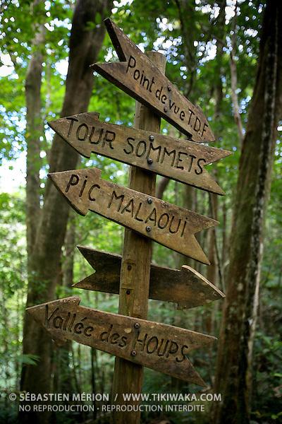 Randonnée aux Monts Koghis, Nouvelle-Calédonie
