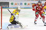 Duesseldorfs Leon Niederberger (Nr.17) hofft auf den Abpraller von Krefelds Goalie Dimitri&nbsp;Paetzold (Nr.32)  beim Spiel in der DEL, Duesseldorfer EG (rot) - Krefeld Pinguine (gelb).<br /> <br /> Foto &copy; PIX-Sportfotos *** Foto ist honorarpflichtig! *** Auf Anfrage in hoeherer Qualitaet/Aufloesung. Belegexemplar erbeten. Veroeffentlichung ausschliesslich fuer journalistisch-publizistische Zwecke. For editorial use only.