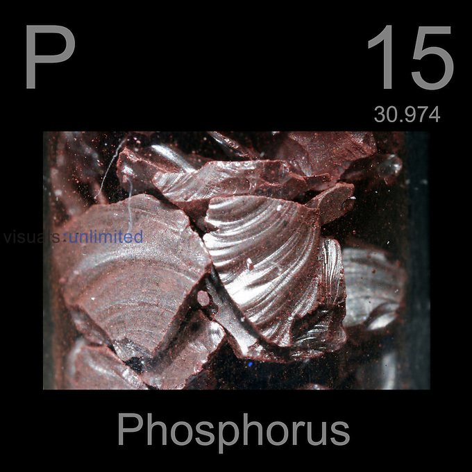 Phosphorus and periodic table information