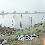 fish farm outside Kolkata