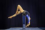 2010 W DI Gymnastics