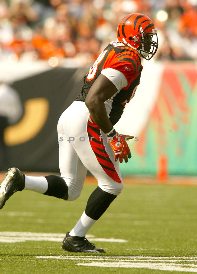 Bryan Robinson, of the Cincinnati Bengals, during their game against the Houston Texans on October 2, 2005...Bengals win 16-10...Kevin Tanaka / SportPics
