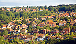 Detached houses in gardens East Dean, East Sussex, England