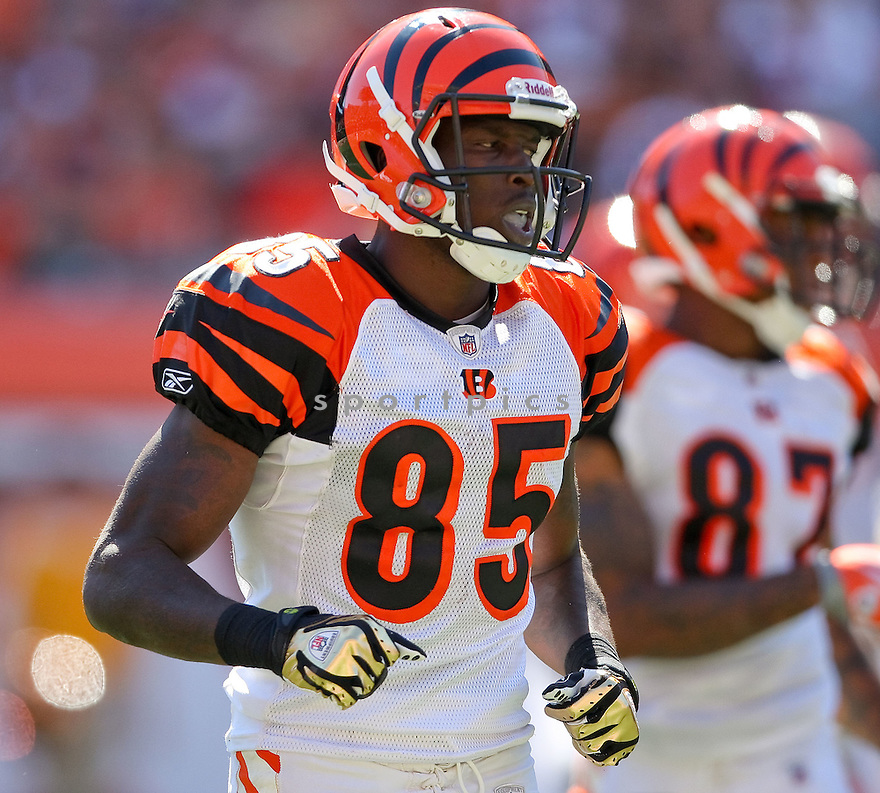CHAD OCHOCINCO,of the Cincinnati Bengals, in actions during the Bengals  game against the Denver Broncos  on September 13, 2009 in Cincinnati, OH  The Broncos beat the Bengals 12-7.
