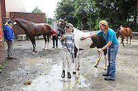 6/8/2010. Ronan and Una Mc Sorley from Belfast are pictured washing their horse Maggie at the Failte Ireland RDS House Show. Picture James Horan/Collins