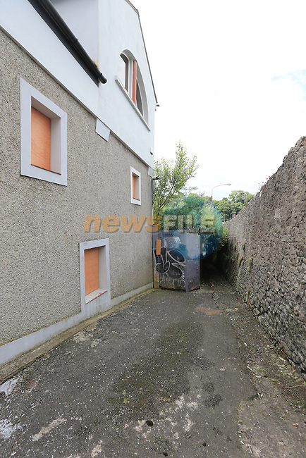 the lane off Narrow west street<br /> Picture:  Fran Caffrey / www.newsfile.ie