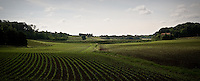 Campo coltivato nella campagna brianzola..A cultivated field in Brianza's campaign