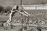 Boy pushing old cultivator in garden on Millers farm, Huntingdon, PA