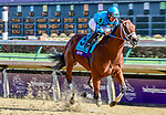November 3, 2018: Roy H #9, ridden by Paco Lopez, wins the Twinspires Breeders' Cup Sprint on Breeders' Cup World Championship Saturday at Churchill Downs on November 3, 2018 in Louisville, Kentucky. Jessica Morgan/Eclipse Sportswire/CSM