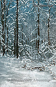 Isabella, CHRISTMAS LANDSCAPE, paintings+++++,ITKE512433-LUCA,#XL#
