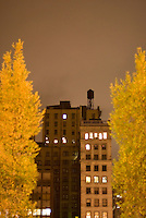 Cityscape - Buildings and Water Tower on Union Square West,  Trees with Fall Foliage on Park Avenue, Union Square, Lower Manhattan, New York City, New York State, USA