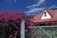 Typical house and flowers in the mountain town of Boquete, Panama