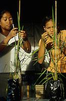 PHILIPPINES Negros, Campo Berde, community seed bank and agricultural training centre for organic rice farming and SRI system of rice intensification, women learn seed crossing  / PHILIPPINEN Negros Campo Berde, genossenschaftliche Reis Saatgut Bank und landwirtschaftliches Trainingszentrum fuer Bioanbau und SRI Anbaumethode von Reis, Frauen lernen die Kreuzung von Samen