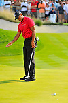 30 August 2009: Tiger Woods reacts to a missed putt during the final round of The Barclays PGA Playoffs at Liberty National Golf Course in Jersey City, New Jersey.