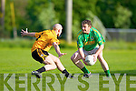 Ger McCarthy(Emmets) and Enda Galvin(Finugue) in O'Sullivan Park last Saturday evening.