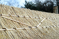 BNPS.co.uk (01202 558833)<br /> Pic: ZacharyCulpin/BNPS<br /> <br /> Pictured: The ridging at the top of the thatch cottage. <br /> <br /> Master thatcher Scott Symonds puts the finishing touches to the new straw roof at the former home of Victorian author Thomas Hardy.<br /> <br /> The National Trust, which owns the picturesque cottage near Dorchester, Dorset, has closed the historic property for more than a month while it undergoes vital conservation work.<br /> <br /> On the inside new structural supports have been installed and the stone floor repointed after taking a battering from thousands of visitors over the years.<br /> <br /> And on the outside the roof has been re-thatched by Scott and his dad Dave who even appeared was an extra in the 2015 film adaptation of Hardy's Far From the Madding Crowd.