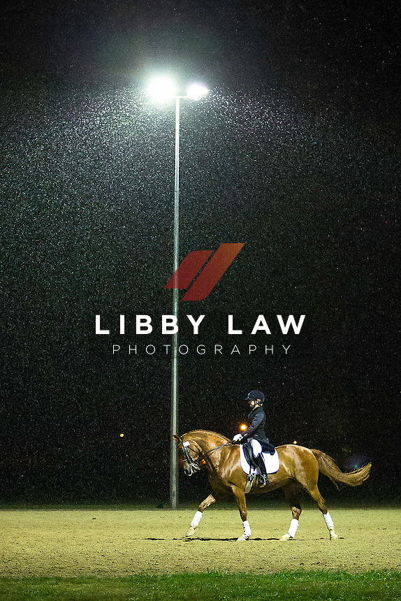 Warming up in the rain under the spotlights: NZL-Julie Brougham (VOM FEINSTEN) 3RD-Stable Of Stallions CDI3* Grand Prix Musical Freestyle: 2015 NZL-Bates NZ Dressage Championships, Manfeild Park - Feilding (Saturday 7 March) CREDIT: Libby Law COPYRIGHT: LIBBY LAW PHOTOGRAPHY