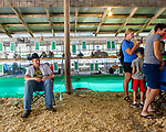 Wyatt Shannon of Milo having take a little time to rest after his lunch among the rabbits and rabbit fans. Shannon was very busy at the fair. He shows rabbits, pigs and horses and made a table for projects entry.