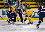 8 February 2020: University of Vermont Catamount Forward Olivia Kilberg, a Junior from Edina, MN, wins a second period face-off against the University of Connecticut Huskies at Gutterson Fieldhouse in Burlington, Vermont. The Huskies defeated the Lady Cats 4-2 in the first game of their weekend Hockey East series. Mandatory Credit: Ed Wolfstein Photo *** RAW (NEF) Image File Available ***