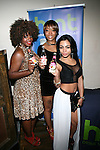 "MarieDriven, Guest and Gemini Attend ""RokStarLifeStyle"" Celebrity Publicist MarieDriven Birthday Extravaganza Hosted by Jack Thriller & MTV Angelina Pivarnick Held at Chelsea Manor, NY"