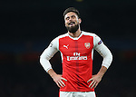 Arsenal's Olivier Giroud looks on during the Champions League group A match at the Emirates Stadium, London. Picture date November 23rd, 2016 Pic David Klein/Sportimage