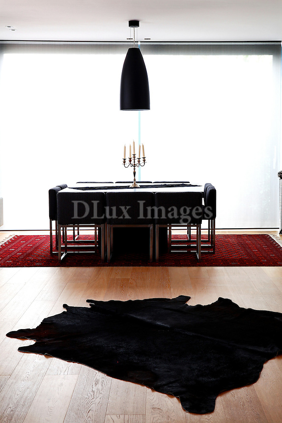 black skin rug in the living room