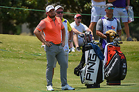 Tyrrell Hatton (ENG) looks on from the tee on 10 during round 4 of the WGC FedEx St. Jude Invitational, TPC Southwind, Memphis, Tennessee, USA. 7/28/2019.<br /> Picture Ken Murray / Golffile.ie<br /> <br /> All photo usage must carry mandatory copyright credit (© Golffile | Ken Murray)