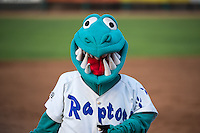 Oggie, the mascot of the of the Ogden Raptors during the game against the Grand Junction Rockies in Pioneer League action at Lindquist Field on July 6, 2015 in Ogden, Utah.  (Stephen Smith/Four Seam Images)
