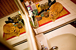 Cats.Orange Tabby in sink.  Reflected in medicine cabinet mirror.