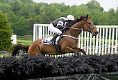 Fog Island and Ross Geraghty clear a fence early in the Sloan Maiden.