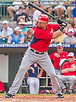 20 March 2015: Washington Nationals infielder Kila Ka'aihue in Spring Training action against the Houston Astros at Osceola County Stadium in Kissimmee, Florida. The Nationals defeated the Astros 7-5 in Grapefruit League play. Mandatory Credit: Ed Wolfstein Photo *** RAW (NEF) Image File Available ***