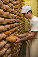 Europe/France/Franche Comté/39 /Jura/Morbier: Affinage du fromage AOP Morbier à la fruitière de Morbier //  France, Jura, Morbier:  making and control of Morbier cheese in an Haut Doubs Dairy <br /> Auto N°: 2013-114
