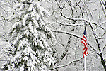 An American Flag flying among the snow covered trees in a Wisconsin Winter