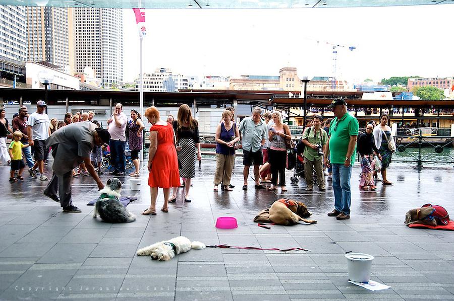 Australia Day 2012, Circular Quay, Ferrython, Occupy Sydney and NRMA Motorfest