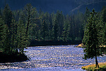 Afternoon light on the Madison River, near West Yellowstone, Yellowstone National Park, Wyoming