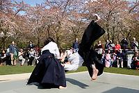 Nederland   Amstelveen   2017 04 08. Cherry Blossom Festival in het Amsterdamse Bos . Het Japanse Sakura (Kersenbloesemfestival) markeert de start van de lente. Volgens traditie vieren families en vrienden dit met een picknick onder de kersenbomen die in bloei staan. De gemeente Amstelveen organiseert dit festival voor de Japanse gemeenschap, als dank voor de schenking van 400 kersenbomen in 2000. Demonstratie van een Japanse vechtsport. Berlinda van Dam / Hollandse Hoogte