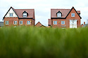26/03/19<br /> <br /> Smartroof houses at Bloors Homes, Frearson Rd, Donington le Heath, Hugglescote, Coalville LE67 2XB<br /> <br /> All Rights Reserved, F Stop Press Ltd.  (0)7765 242650  www.fstoppress.com rod@fstoppress.com