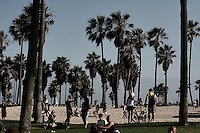 marina del rey and venice, california