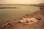 A dead soldier, Iran-Iraq war, also known as First Persian Gulf War, and by the British at that rime as the Gulf War. Lasted from 1980 to 1988. The Mesopotamian   Marshes near Basra  Iraq.