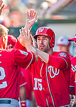 6 March 2016: Washington Nationals infielder Scott Sizemore returns to the dugout after scoring during a Spring Training pre-season game against the St. Louis Cardinals at Roger Dean Stadium in Jupiter, Florida. The Nationals defeated the Cardinals 5-2 in Grapefruit League play. Mandatory Credit: Ed Wolfstein Photo *** RAW (NEF) Image File Available ***