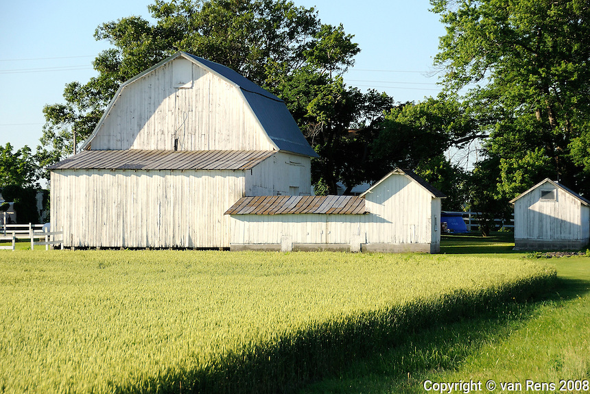 Isolated barns in rural setting showing structure and color in early morning light.