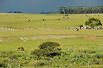 URUGUAY,  Villa Sara , Treinta y Tres, estancia and landscape /<br /> URUGUAY Villa Sara, Farm und Landschaft im Gewitter