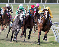 HALLANDALE BEACH, FL - MAR 31:Lull #2 trained by Christophe Clement with Jose Ortiz in the irons hold the rail position along the final turn on the way to winning The Honey Fox Stakes (G3) at Gulfstream Park on March 31, 2018 in Hallandale Beach, Florida. (Photo by Bob Aaron/Eclipse Sportswire/Getty Images)