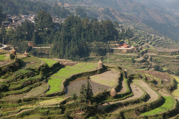 The village is built on a steep mountain slope overlooking terraced paddy fields.