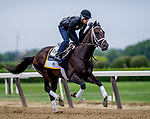 ELMONT, NY - JUNE 07: Noble Indy gets in a workout as horses prepare Thursday for the 150th running of the Belmont Stakes at Belmont Park on June 7, 2018 in Elmont, New York. (Photo by Scott Serio/Eclipse Sportswire/Getty Images)