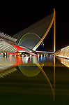 """Ciudad de las Artes y de las Ciencias"", Valencia, Spain. Part of the series that won First Prize in ""Night Photography"" category, and Second Prize in ""Architecture: Bridges"" category, International Photography Awards, Non-professional."