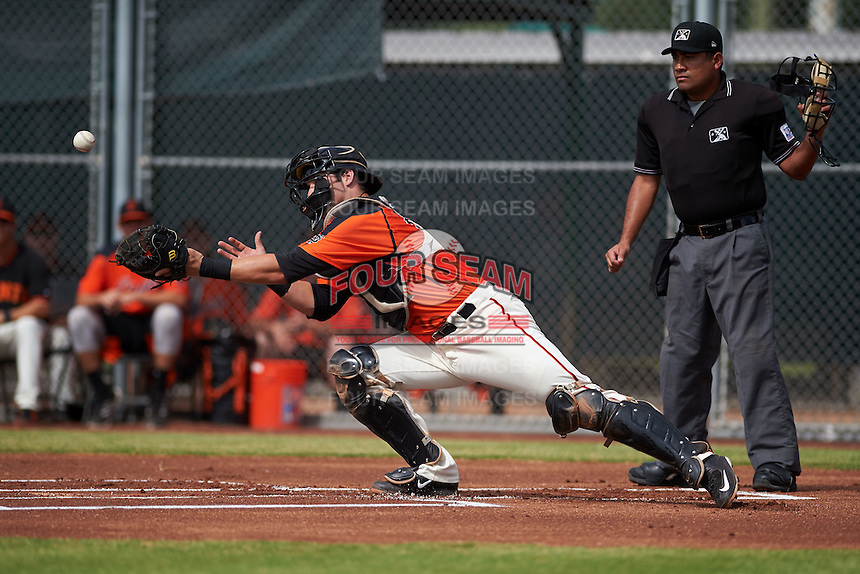 San Francisco Giants Matt Winn (12) attempts a diving catch as umpire Nestor Ceja looks on during an instructional league game against the Oakland Athletics on October 12, 2015 at the Giants Baseball Complex in Scottsdale, Arizona.  (Mike Janes/Four Seam Images)