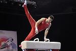 British Championships Individual  Apparatus and Masters Finals 29.3.15