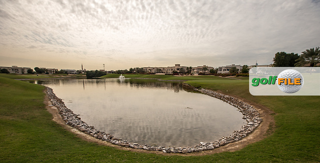 Rear of 6th green at The Address Montgomerie Golf Club, Dubai, United Arab Emirates.  27/01/2016. Picture: Golffile | David Lloyd<br /> <br /> All photos usage must carry mandatory copyright credit (&copy; Golffile | David Lloyd)