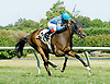 Hobo Ridge winning at Delaware Park on 7/25/12